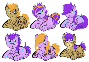 SplishSploshxStudMuffin foals by KingRefi