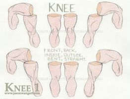 Knee 1 - Rotation by jasonwangart