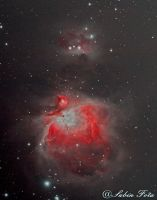 M42 - Great Orion Nebula by whiteLion07