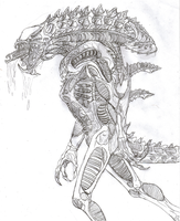 Predalien Warrior by TITANOSAUR