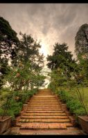 Sunset Stairs by Kodomut