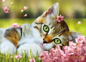 In a World of My Own by ThreshTheSky