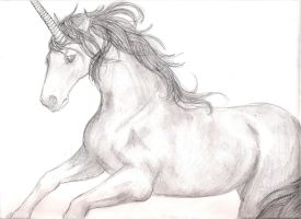 Unicorn by hannz0rz