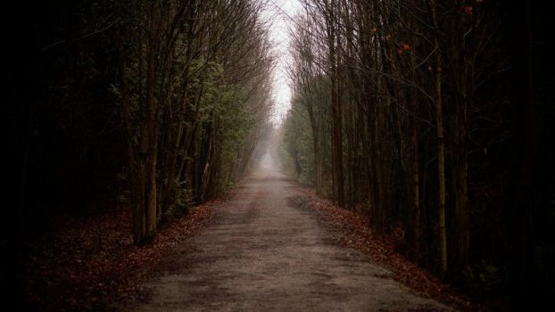 The road ahead.  by wolf-king1992