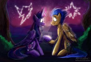 Commission Twilight Sparkle and Flash Sentry by Mad--Munchkin