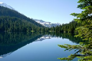 Mt Rainier and Reflection by annamarcella24