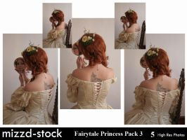 Fairytale Princess P Pack 3 by mizzd-stock
