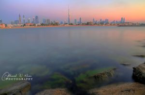 Mesmerized Vicinity by ahmedwkhan