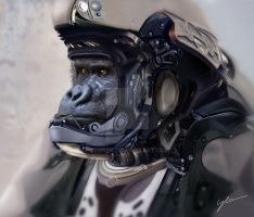 Gorilla Soldier by drbrBr