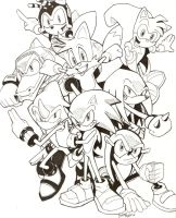 Sonic, Tails, and the Chaotix by Vauz