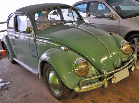 Old green Bug by zynos958