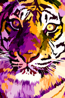 New tiger closeup by elviraNL