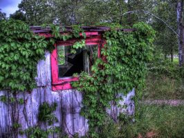 Shack by sixwings