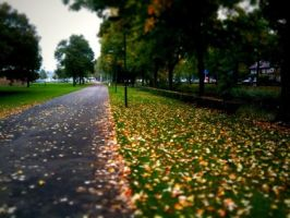 Fall in Breda by DeGraafCreativity