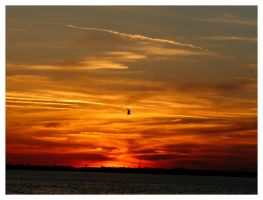 Jekyll Island Sunset 20 by sees2moons