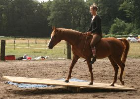 Trail riding over a see-saw without a bridle by Nexu4