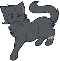 Floating Cinderpelt by meadowllark
