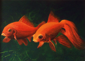 Goldfish - acrylic painting by Giselle-M