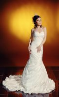 bride wedding dress stock 11 by Luria-XXII