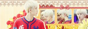 [Cover Zing] Sehun-1 ( For Yui unnie) by jangkarin