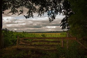 gate by nomad666