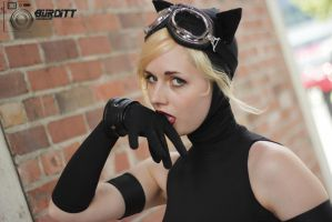 Cat Out Of The Bag 15 by Burditt-Photography