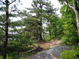Appalachian Trail - Vermont 01 by Ovid2345
