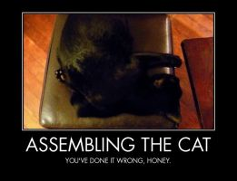 Assembling the cat : you failed ! by Aiseant