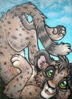 ACEO 5: Cheetah Cub Lounging by GarnetWeavile461