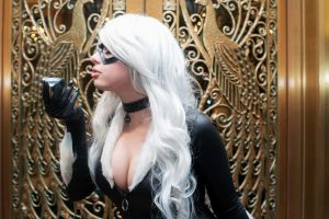 Black Cat (Felicia Hardy) by Shinigami-X
