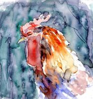 Portrait of a rooster by Just-a-Witness
