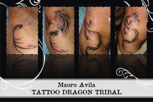 My Tattoo - Dragon Tribal by mauroavila
