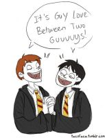 Harry and Ron: BROTP by taconaco