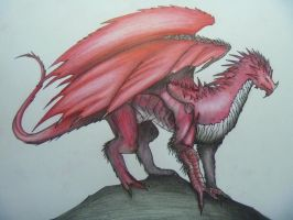 red dragon by VICTOR2012