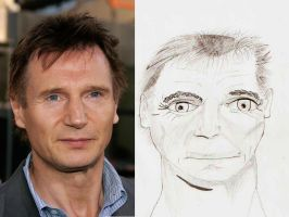 Comparing Liam Neeson Face by indartlover
