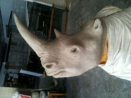 Rhino WIP by TimBakerFX