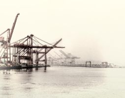 Seattle cranes by Mackingster