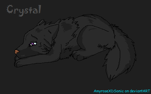 Crystal the wolf by AmyroseXDSonic