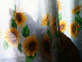 Cat Curtain Silhouette by ang3lkist