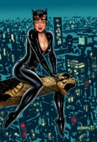 Catwoman on Gotham by night by JoshTempleton