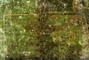 Texture 145 by deadcalm-stock
