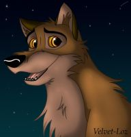 -Balto- by Velvet-Loz