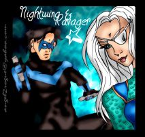 Nightwing and Ravager by angel-gidget