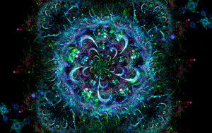 Who Wants To Be A Fractal Artist? by darkdissolution