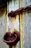 Door Hardware with a little character by aggie00