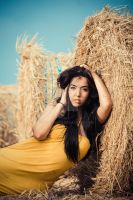 Paddy by melzphoto