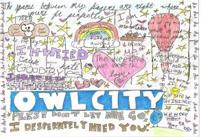 Owl City by Piepin
