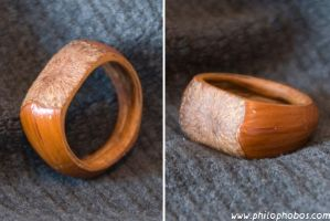 hazelnut ring I by Philophobos