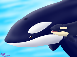 Orca and Calf by laryssadesenhista