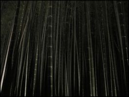 Forest of Bamboo by AntiRetrovirus